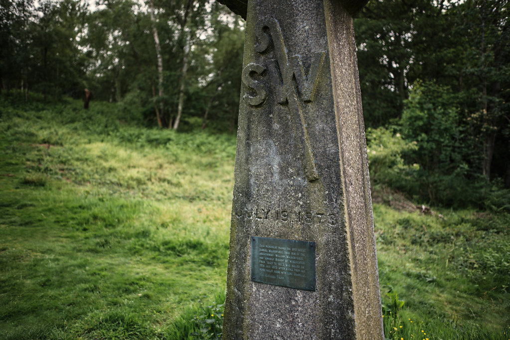 Samuel Wilberforce Memorial, Abinger Roughs